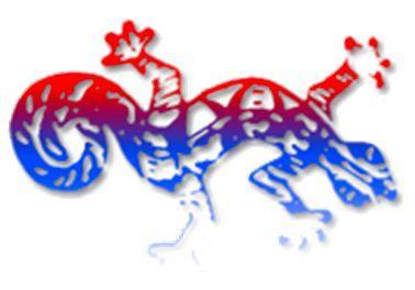 APAEH logo